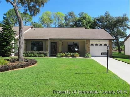 7279 PRINCE GEORGE CT  Spring Hill, FL MLS# 2172146
