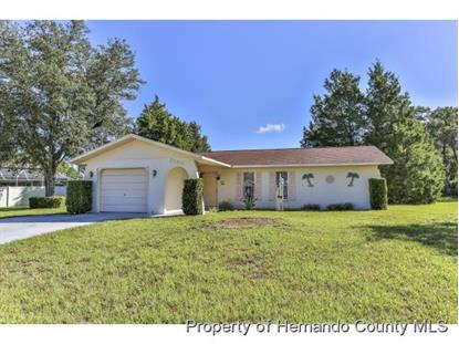 3130 CLOUDCROFT AVE  Spring Hill, FL MLS# 2172587