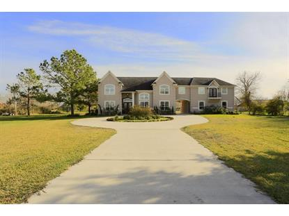 4681 COUNTY ROAD 435, Alvin, TX
