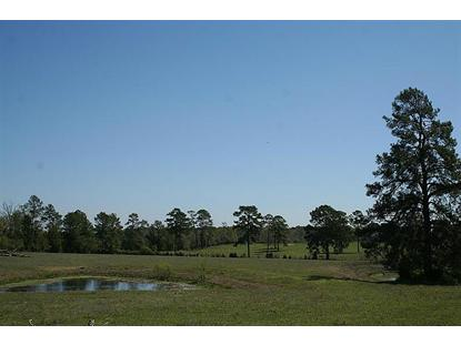 40 BAYS CHAPEL RD  Richards, TX MLS# 23696863