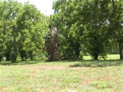 4410 Whistling Duck Lane , Fulshear, TX
