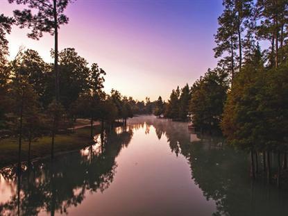 37307 Diamond Oaks Drive  Magnolia, TX MLS# 38532604