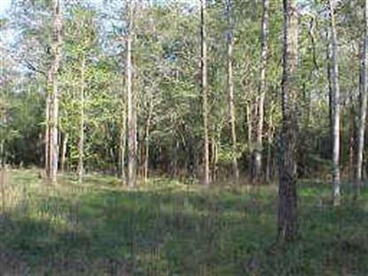 0 Granite Ridge Estates  Magnolia, TX MLS# 55436040