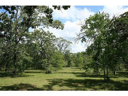 33 FOREST GLEN RD.  Richards, TX MLS# 57881549