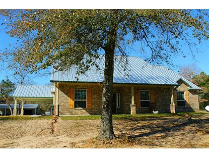 1620 FM 1791  Richards, TX MLS# 58738244