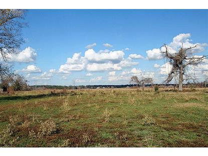 0 Spur 149  Magnolia, TX MLS# 6216444