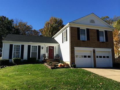 4530 Stone Pine Court  Chantilly, VA MLS# 64908440