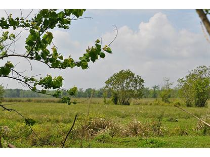 535 Ac County Road 2068  Hull, TX MLS# 6640882