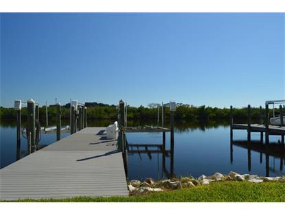 1182 Starfish Lane  Tarpon Springs, FL MLS# 68299340