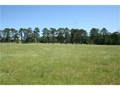 46 BAYS CHAPEL RD  Richards, TX MLS# 70716564