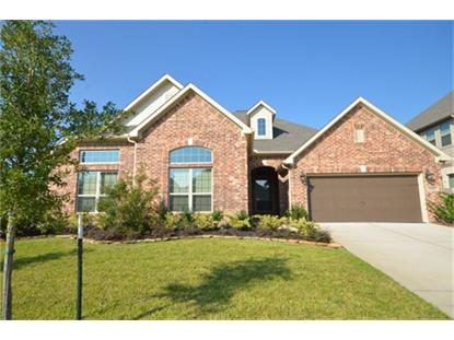 2323 Darden Springs Ln, Friendswood, TX 77546