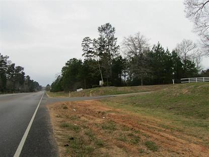 23724 Fm 1488  Magnolia, TX MLS# 79414341