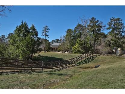 28132 Arrow Head Trail  Magnolia, TX MLS# 82321727