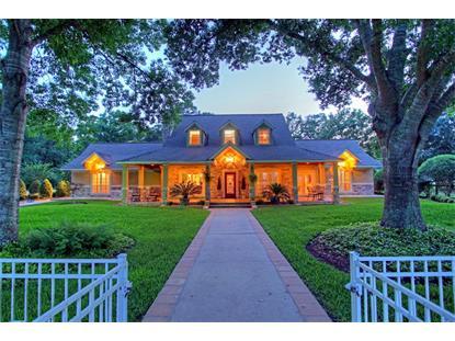 11681 LEONIDAS HORTON RD  Conroe, TX MLS# 94391244