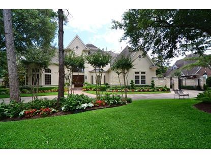 1607 HAMPTON OAKS  Houston, TX MLS# 96029428