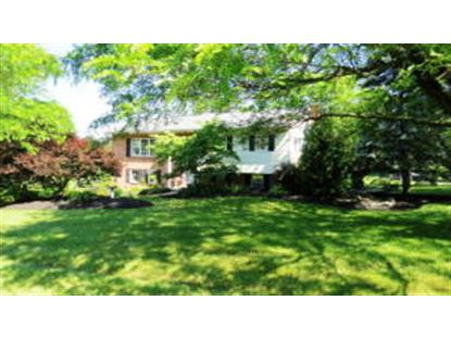 50 TERRACE HILL ROAD Pine Grove, PA MLS# 222720