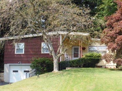 501 AMERICAN LEGION  Pine Grove, PA MLS# 223277