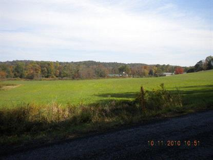 0 BROOKSIDE ROAD Pine Grove, PA MLS# 224714