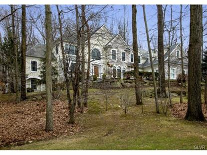 2450 Ballybunion Road Center Valley, PA MLS# 487291