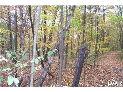 0 West Mountain Road Wind Gap, PA MLS# 489967
