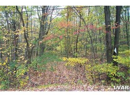 0 Old Grade Road Wind Gap, PA MLS# 489968
