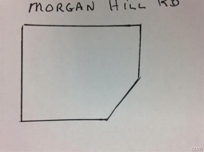 160 Morgan Hill Road Williams Twp, PA MLS# 490487