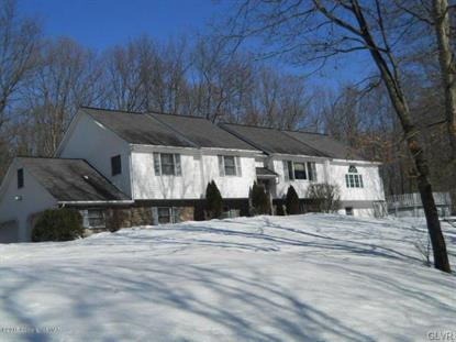 104 Mount Jefferson Drive Chestnuthill Twp, PA MLS# 491236