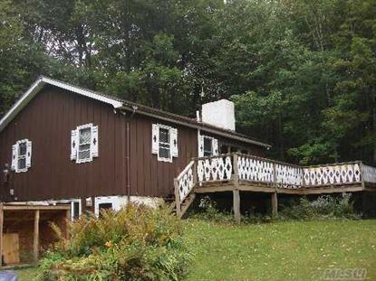 4488 Rt 103 Mount Holly, VT MLS# 2500379