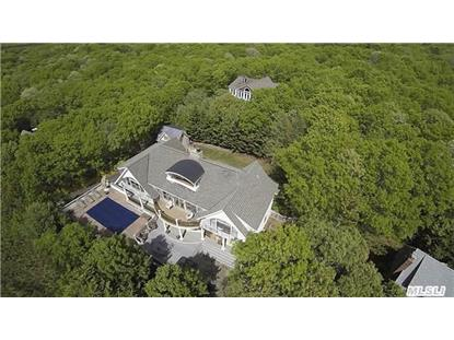 70 Bridies Path Southampton, NY MLS# 2739748