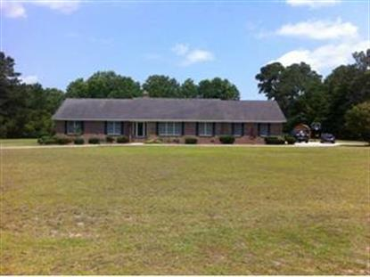 313 BLUE RIDGE DRIVE, Pawleys Island, SC