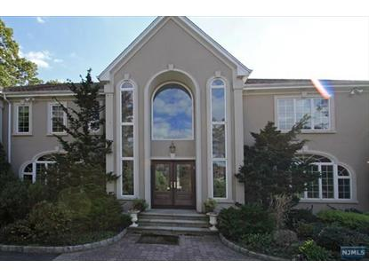 14 HOVERMAN RD Old Tappan, NJ MLS# 1335144