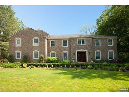 27 PINE HILL RD Old Tappan, NJ MLS# 1406905