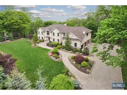170 APPLE RIDGE RD Woodcliff Lake, NJ MLS# 1412327