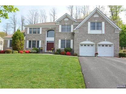141 CUMBERLAND CT Paramus, NJ MLS# 1416873