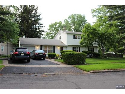 190 S Beech                Dr River Edge, NJ MLS# 1419599