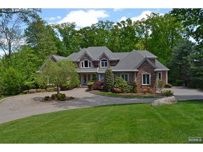 56 W WILDWOOD RD Saddle River, NJ MLS# 1419879