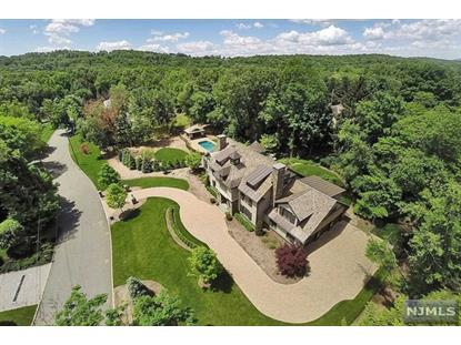 378 Hillview             Ter Franklin Lakes, NJ MLS# 1421536