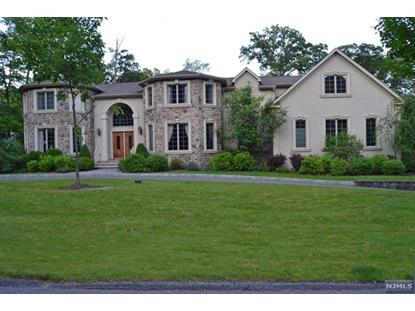 44 DANEBURY DOWNS Upper Saddle River, NJ MLS# 1425661