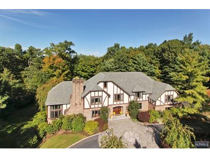 847 Ridge View Way Franklin Lakes, NJ MLS# 1433179