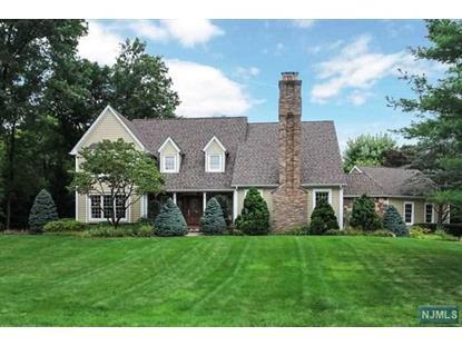 711 Smoke Hollow Trl Franklin Lakes, NJ MLS# 1433745