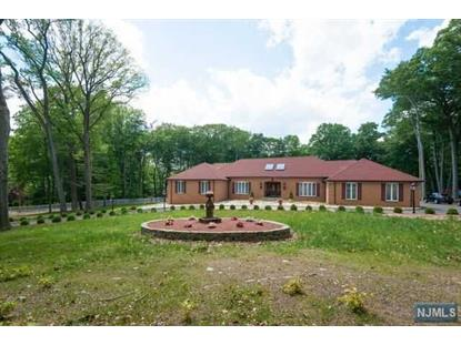 91 Chestnut Ridge Rd Saddle River, NJ MLS# 1507446