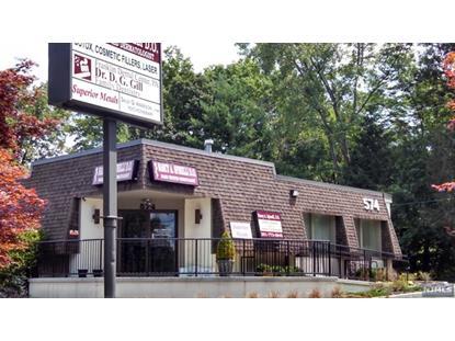 574 Franklin Ave Franklin Lakes, NJ MLS# 1509467