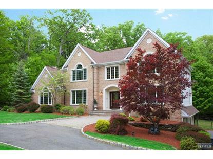 217 Forest Ridge Ct Franklin Lakes, NJ MLS# 1519039