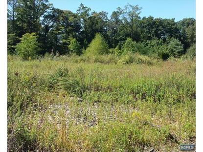 Real Estate for Sale, ListingId: 35552009, Alpine,NJ07620
