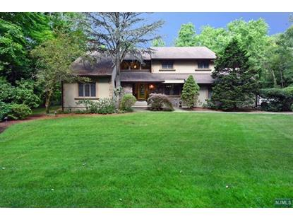 1090 High Mountain Rd Franklin Lakes, NJ MLS# 1628553