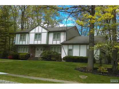 81 yellow brick rd wayne nj mls 1719887