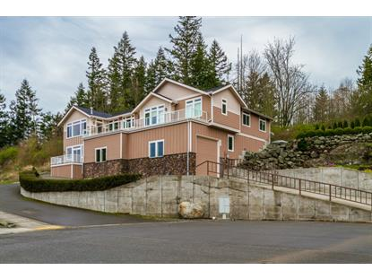 787 Burlington Heights Dr  Burlington, WA MLS# 746275