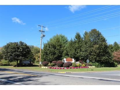 Route 209  East Stroudsburg, PA MLS# 13-4470