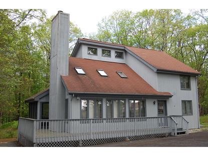 104 Burning Tree Drive  Lords Valley, PA MLS# 13-4904