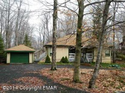 184 Selig Road Pocono Lake, PA MLS# PM-10765